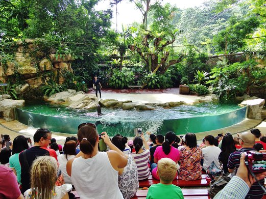 Singapore Zoo splash safari show 1