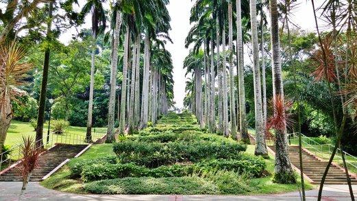 Ang Mo Kio Town Garden West