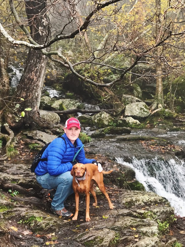 Five Reasons to Bring Your Dog to Big Meadows Lodge