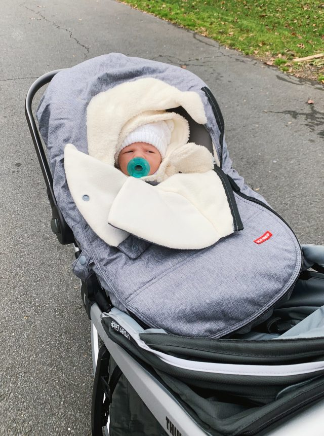 Skip Hop Car Seat Cover