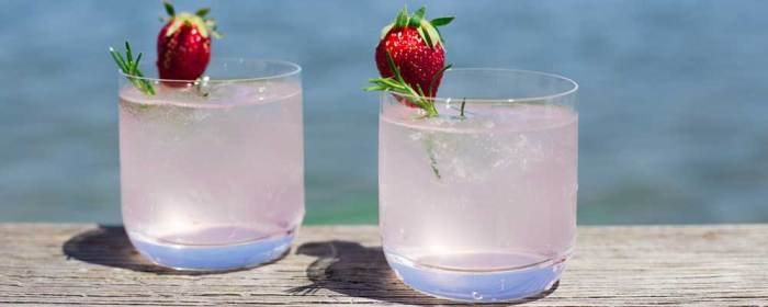 Strawberry and Rosemary Gin Fizz