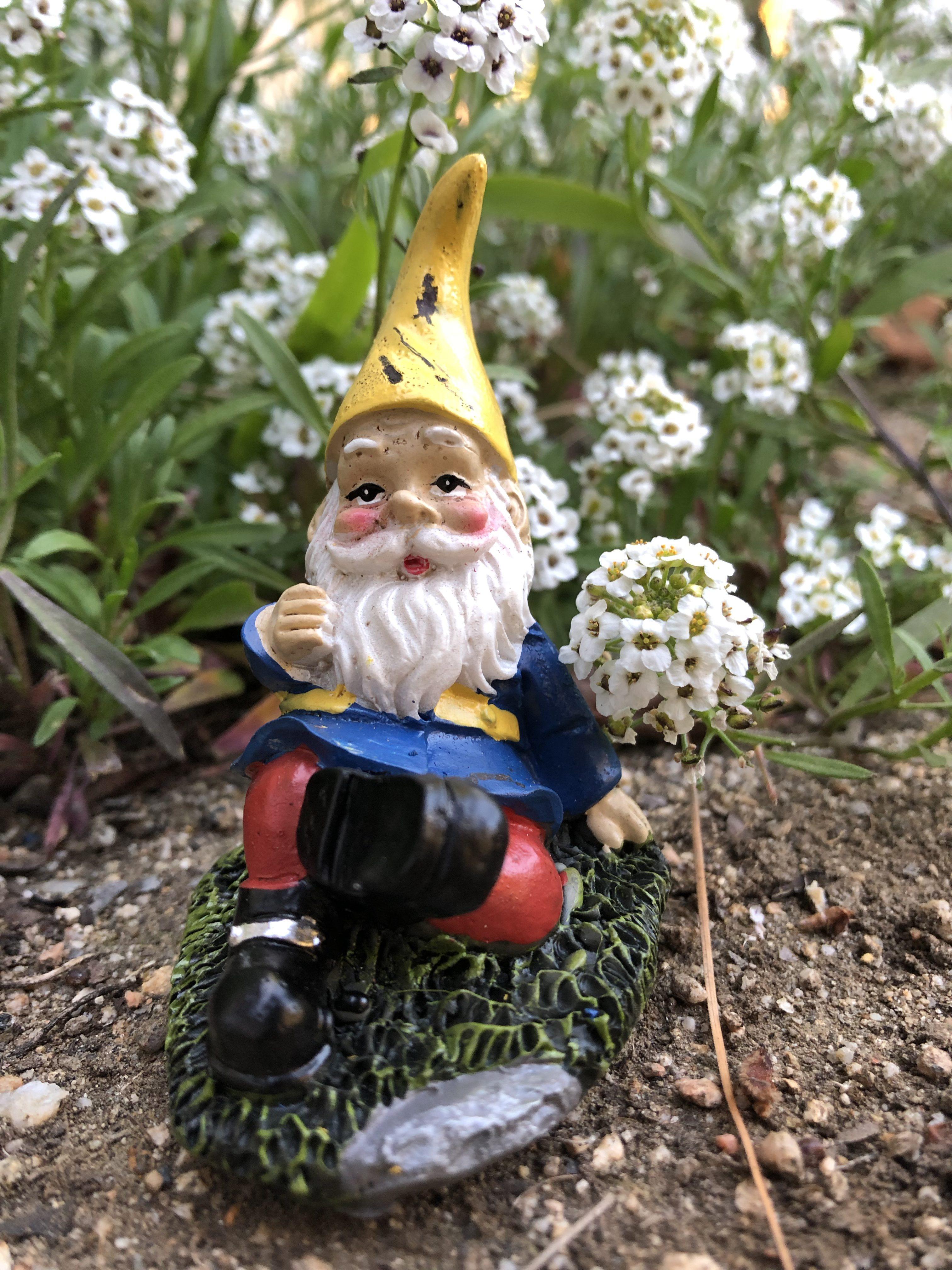 Seated Garden Gnome