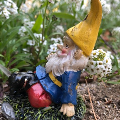 Side view of Sprouted Dreams Gnome