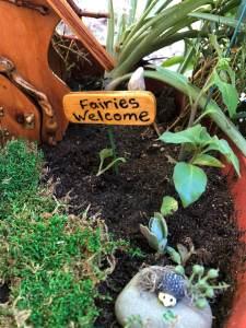 Outdoor Fairy Garden in a Pot (2)