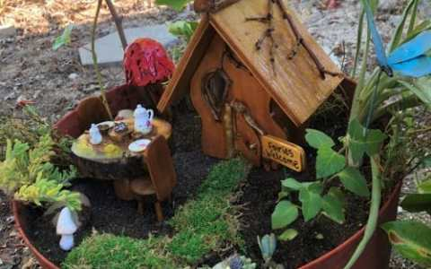 Outdoor Fairy Garden in a Pot (4)