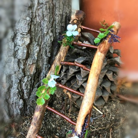 Fairy Garden Ladder handmade by Sprouted Dreams (1)