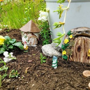 Spring Yellow Fairy Garden by Sprouted Dreams5