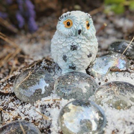 Snowy Owl7