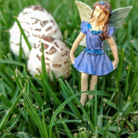 the Merrymaking Faerie4