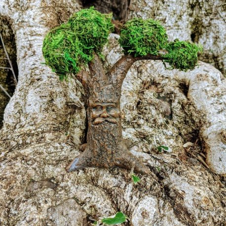 Gnome Tree7