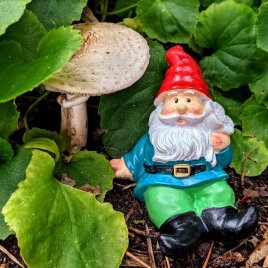 Green Gnome with Flower
