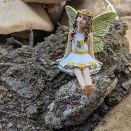 Honey Fairy2