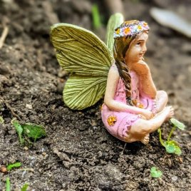 Meadow Fairy
