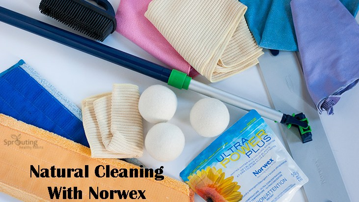 Natural Cleaning With Norwex