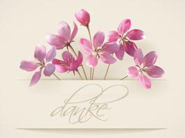 Die 15 Besten Bilder Zu Danke Spruch Danke Dankeschon Spruche