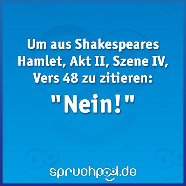 "Um aus Shakespeares Hamlet, Akt II, Szene IV, Vers 48 zu zitieren ""Nein!"""