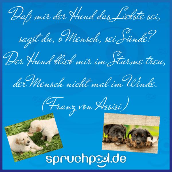 Daß mir der Hund das Liebste sei, sagst du, o Mensch, sei Sünde? Der Hund blieb mir im Sturme treu, der Mensch nicht mal im Winde. Franz von Assisi