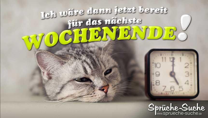 Lustige Bilder Katze Alkohol Humor Lustige Bilder Xdpedia
