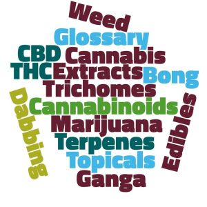 Word Cloud of Cannabis Terms