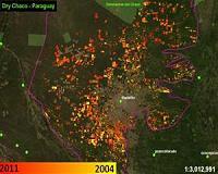 deforestation-dry-chaco-paraguay-2004-2011-bg.jpg