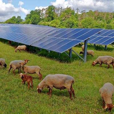Researchers unveil roadmap to expand NY solar energy, meet green goals