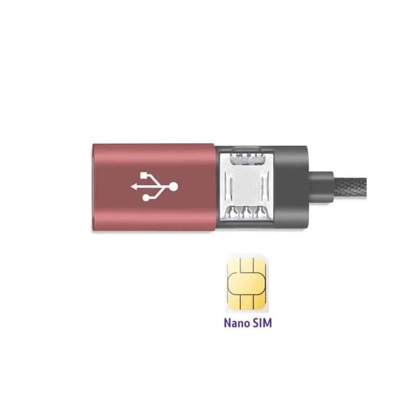 GSM iPhone bug
