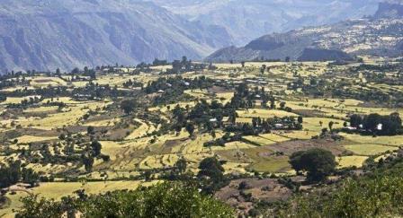 ETHIIOPIAN HIGHLANDS