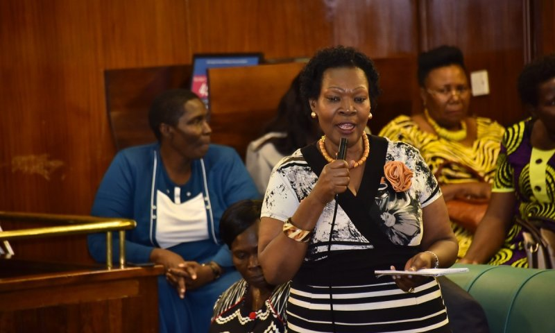 Buy Pads For Your Daughters, Don't Wait For Gov't – Mp Kamateeka