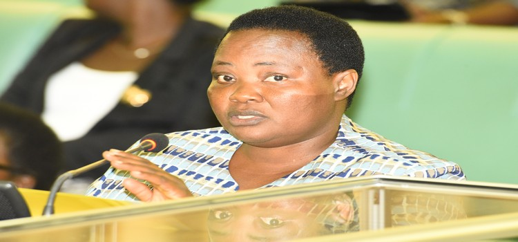 Legislators Re-Appoint Private Firm To Audit Auditor General!