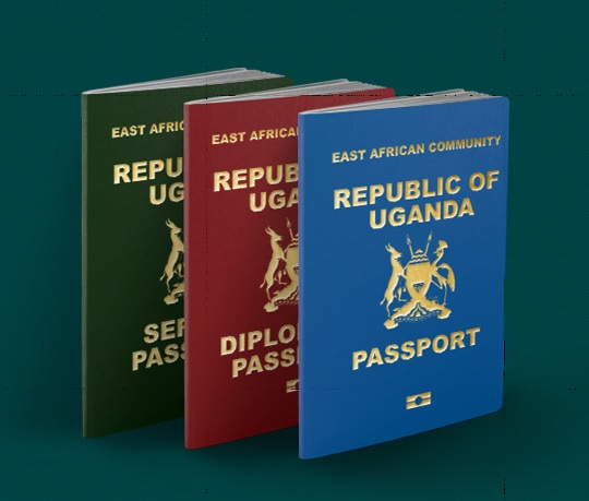 Renew Your Passport Now Or Forget Flying: Internal Affairs Ministry Announces As Deadline For Old-Passport Looms