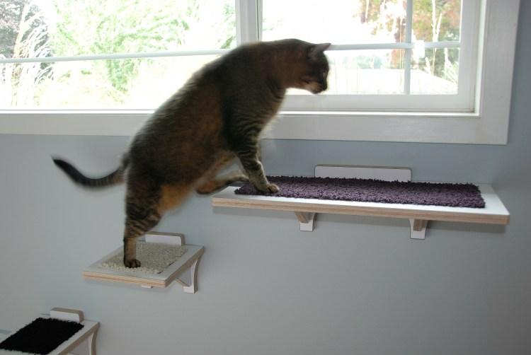 cat perch wall mounted
