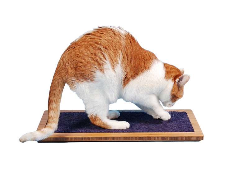 LO CAT SCRATCHER being used by white and orange cat
