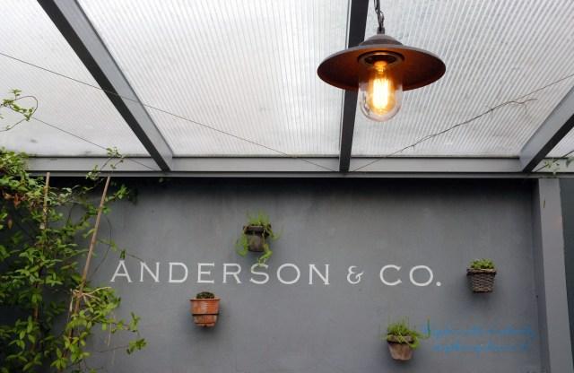 ANDERSON6