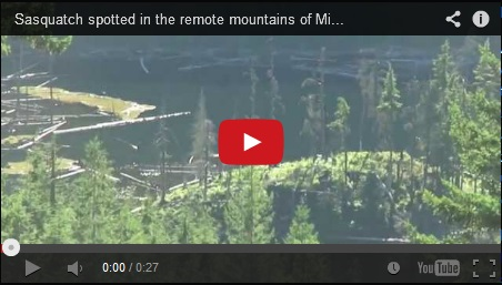 Bigfoot video from Mission BC