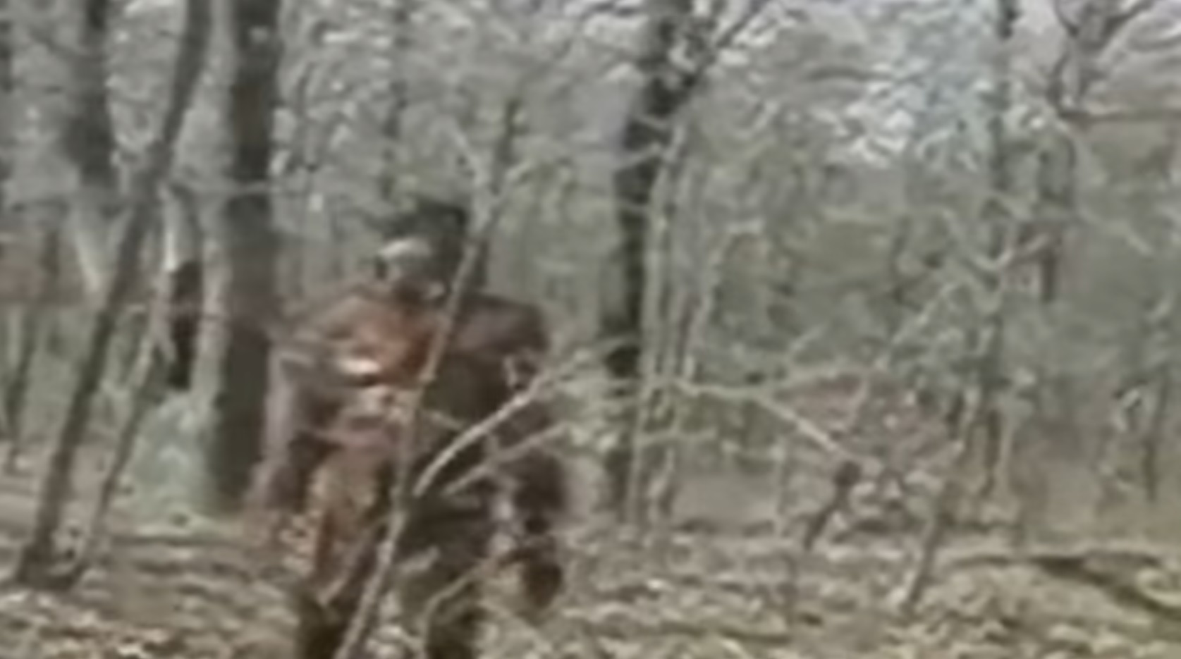 Maine Sasquatch? Video of Possible Bigfoot