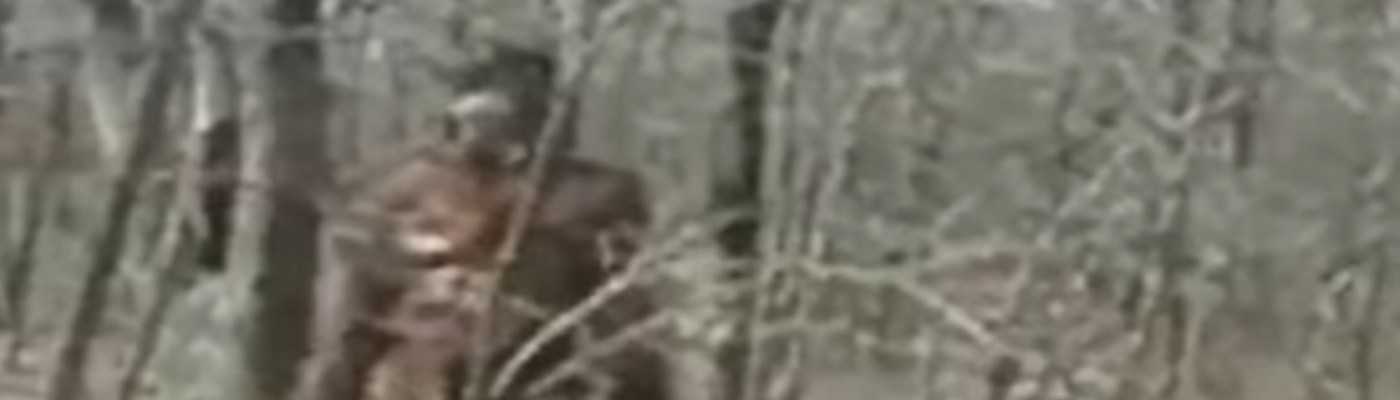 Maine Sasquatch / Bigfoot