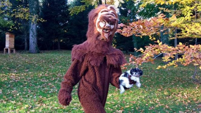 Tom Brady as Bigfoot – Halloween
