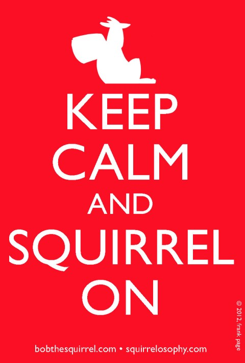 keep calm and squirrel on