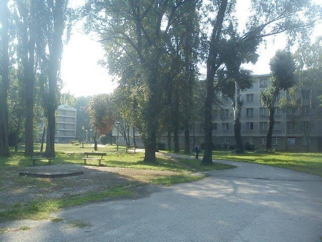 Zbog nepravilnosti u Pravilniku ministarstvo zatražilo očitovanje zagrebačkog SC-a