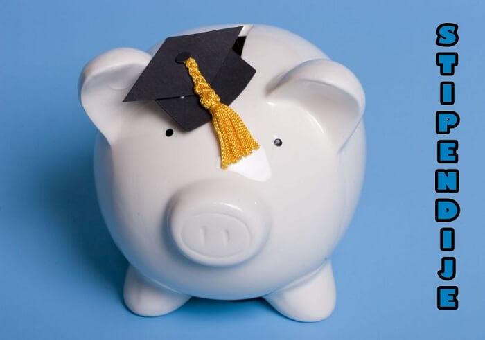 Bogata ponuda studentskih stipendija u Hrvatskoj i inozemstvu