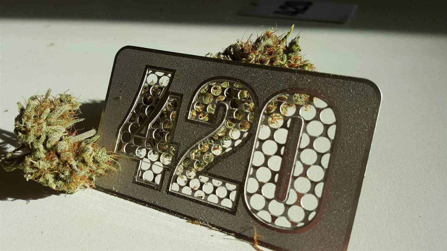 Dan marihuane: 420 pokrenuli su srednjoškolci