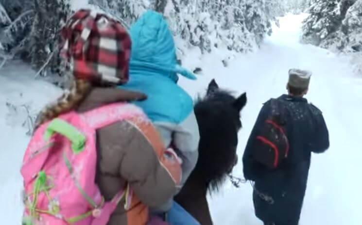 Dok se jedni žale na skupi prijevoz, drugi do škole idu na konju