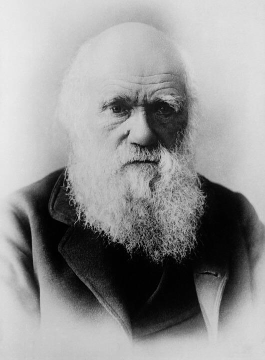 Porijeklo mitova o Darwinu i postanak pogrešnih interpretacija