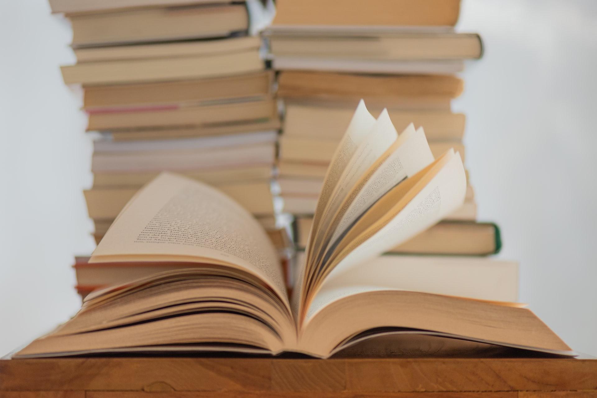 Proglašena najčitateljica 2020. godine: 12-godišnja Ema pročitala je čak 121 knjigu