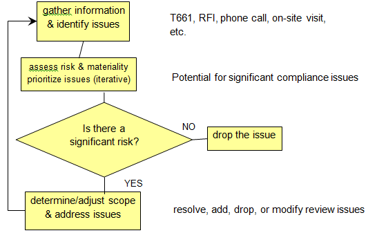 Risk considerations and determining the scope of review (Chart)