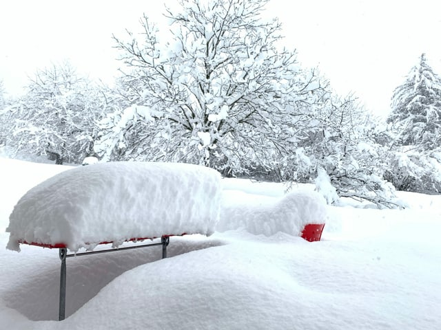 Snow-covered seating in the garden.