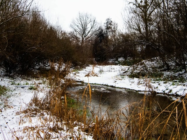 River with snowy banks