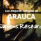Ranking de los mejores colegios de Arauca
