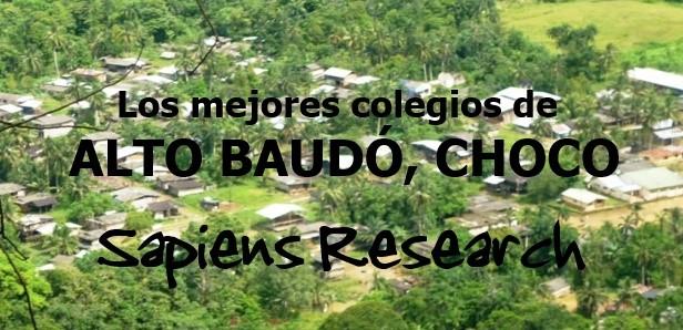 Los mejores colegios de Alto Baudó, Chocó