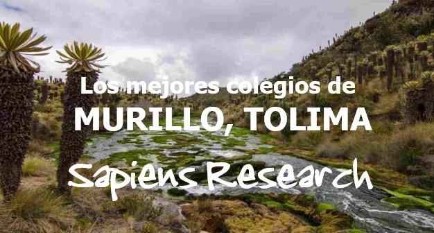 Los mejores colegios de Murillo, Tolima